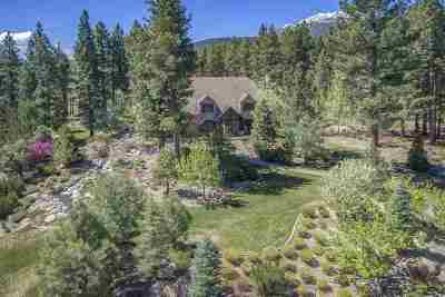 Washoe County Single Family Home New: 20307 Bordeaux Drive