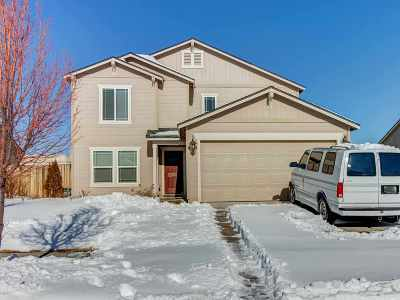 Washoe County Single Family Home For Sale: 9055 Convair Way