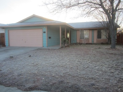 Sparks NV Single Family Home New: $255,500