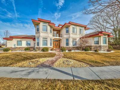 Washoe County Single Family Home New: 6752 Eagle Wing