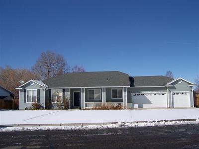 Minden NV Single Family Home Active/Pending-Call: $419,500