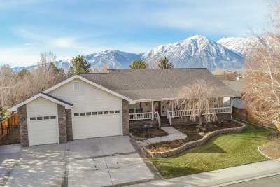 Gardnerville Single Family Home For Sale: 937 Wintergreen Drive