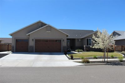 Gardnerville, Minden Single Family Home Back On Market: 1119 Las Brisas Drive
