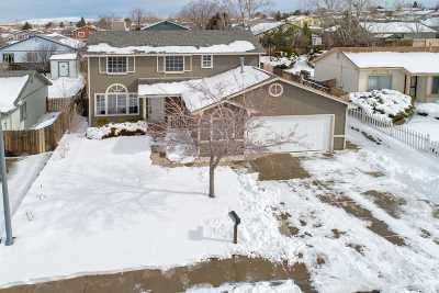 Reno Single Family Home New: 8650 Beechcraft Drive