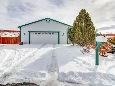 Washoe County Single Family Home For Sale: 740 Snowdrop