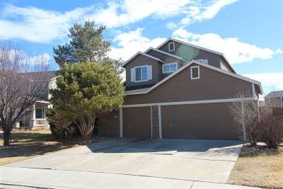 Sparks NV Single Family Home New: $419,900