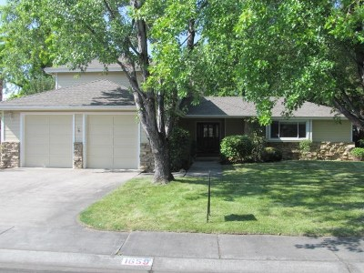 Minden Single Family Home For Sale: 1659 Zaldia Dr.