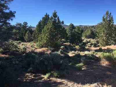 Reno Residential Lots & Land For Sale: 2272 Empire Road