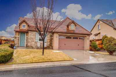 Washoe County Single Family Home New: 5275 Vista Heights