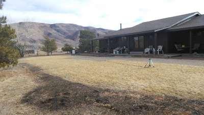 Reno Farm & Ranch For Sale: 16500 Pyramid Hwy
