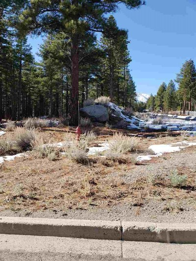 Reno Residential Lots & Land For Sale: 880 Piney Creek Rd