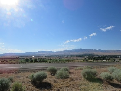 Winnemucca, Orovada, Paradise Valley, Lovelock, Imlay, Golconda Residential Lots & Land For Sale: Us Hwy 95 North