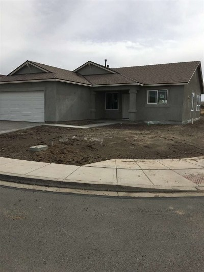 Fernley Single Family Home For Sale: 234 Red Oak Dr.