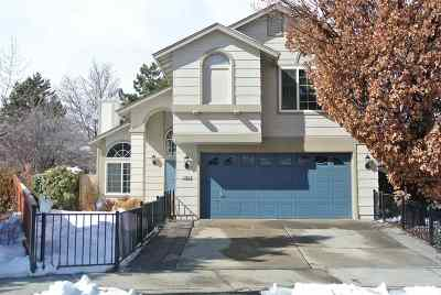 Washoe County Single Family Home New: 1300 Starview Circle
