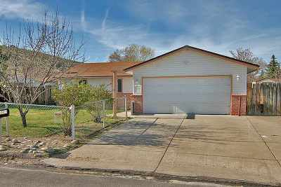 Reno Single Family Home Active/Pending-Loan: 14015 Perlite Drive