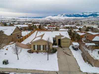 Reno Single Family Home New: 10175 Gold Mine Drive,