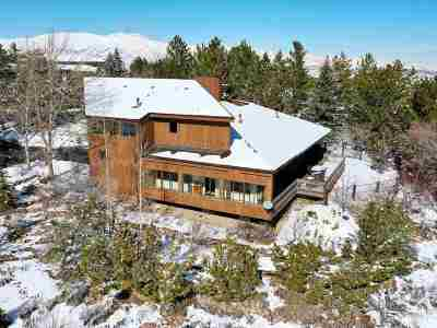 Reno Single Family Home New: 55 Rimfire Circle