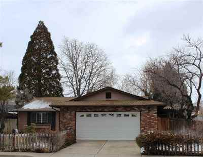 Washoe County Single Family Home New: 3020 Chollar Circle