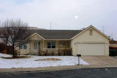 Washoe County Single Family Home New: 2206 Libero Drive