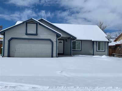 Carson City Single Family Home New: 3404 Bonnyview Drive