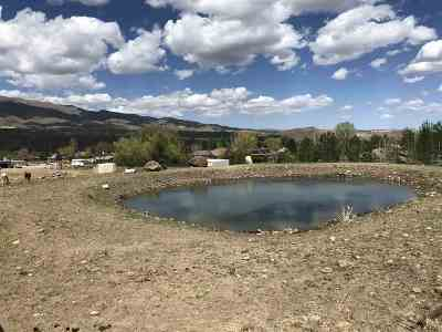 Reno Residential Lots & Land For Sale: 600 Deer Mountain