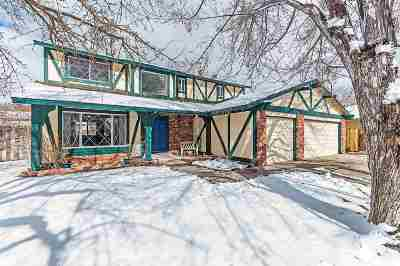 Reno, Sparks, Carson City, Gardnerville Single Family Home New: 2672 Drexel Way