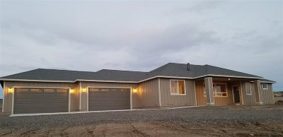 Minden NV Single Family Home For Sale: $645,000