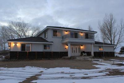 Yerington Single Family Home For Sale: 19 Arden