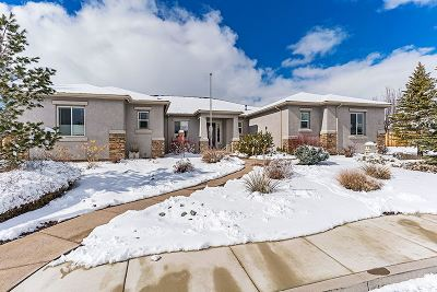 Reno, Sparks, Carson City, Gardnerville Single Family Home New: 9465 Cordoba