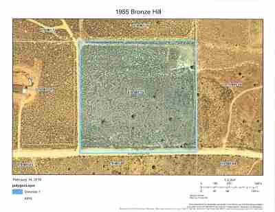 Reno Residential Lots & Land New: 1950 Bronze Hill