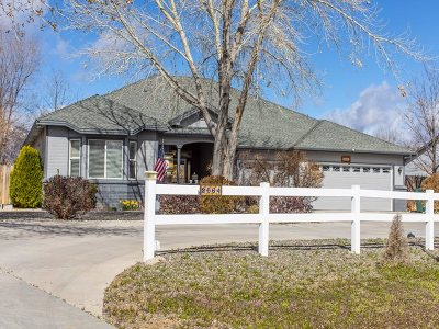 Minden NV Single Family Home For Sale: $624,995