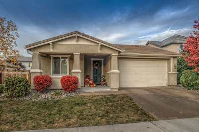 Reno Single Family Home New: 565 Luciana