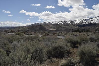 Reno Residential Lots & Land New: Mule Deer Court