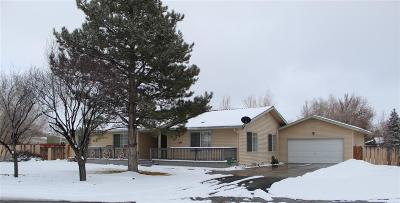 Gardnerville Single Family Home Active/Pending-Loan: 1261 Sorensen Lane