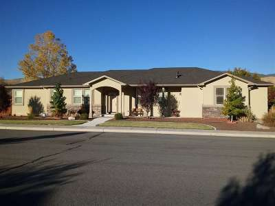 Carson City Single Family Home Active/Pending-Loan: 781 Rasner Ct