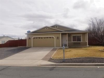 Washoe County Single Family Home New: 7126 Fantasia Ct