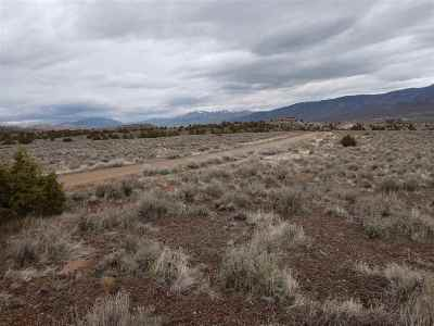 Reno Residential Lots & Land New: Yellow Tail Rd.