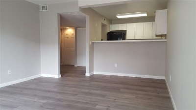 Reno Condo/Townhouse New: 2555 Clear Acre #91/1
