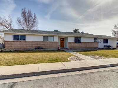 Carson City Single Family Home For Sale: 1619 Karin Drive