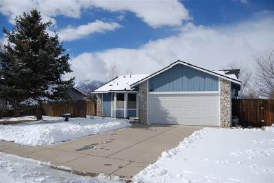 Gardnerville Single Family Home Active/Pending-Loan: 666 Joette Drive