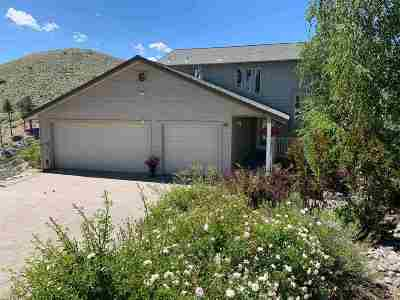 Carson City Single Family Home For Sale: 20 Woodridge