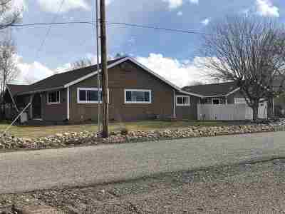 Gardnerville Single Family Home For Sale: 1903 Palomino