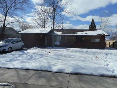Gardnerville Single Family Home Active/Pending-House: 742 Lyell Way