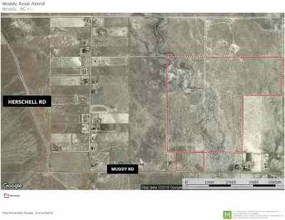 Residential Lots & Land For Sale: 3149 Muddy Road, 2 Parcels