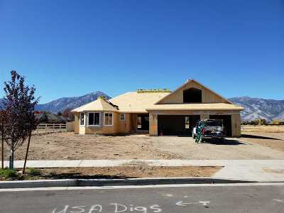 Gardnerville Single Family Home For Sale: 1022 Silveranch