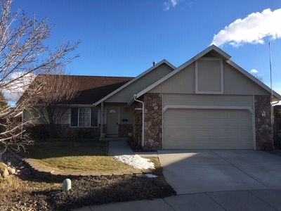 Carson City Single Family Home For Sale: 333 Chateau Ct