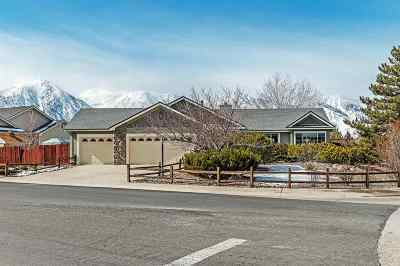 Gardnerville Single Family Home Active/Pending-Loan: 994 Springfield