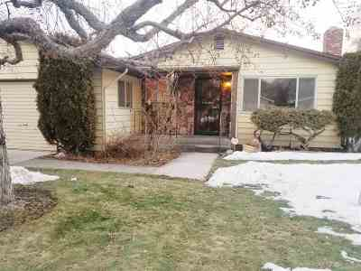 Carson City Single Family Home For Sale: 213 S Richmond Ave