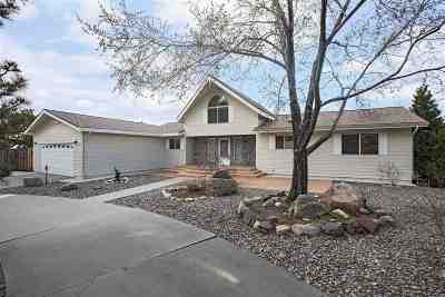 Carson City Single Family Home For Sale: 33 Conestoga Dr.