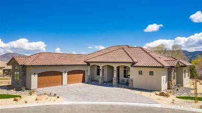 Reno Single Family Home For Sale: 16020 Geyser Road